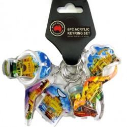 6 Bunch Acrylic Keyring